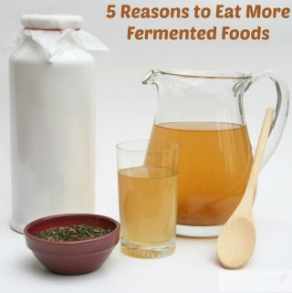 5 Reasons to Eat More Fermented Foods