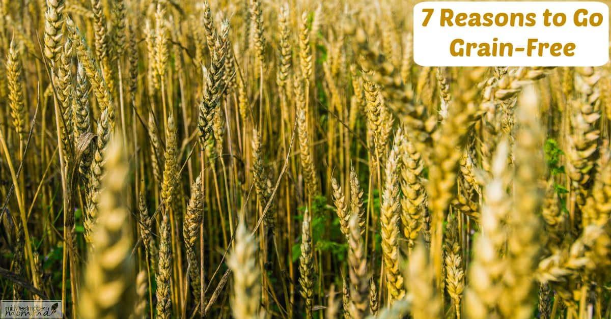 7 Reasons You Should Go Grain Free