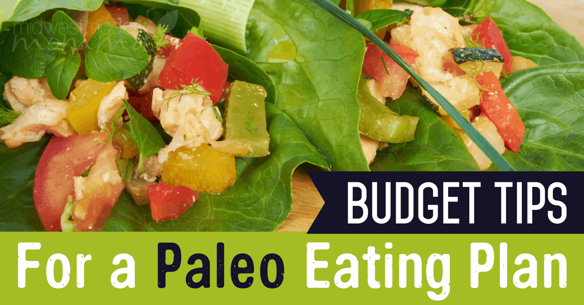 Budget Tips For A Paleo Eating Plan