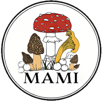 midwestmycology.org