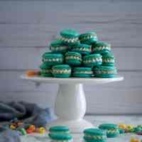 Fruit Loops Macarons (& doing)