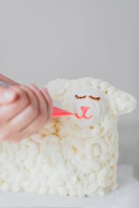 The eyes, nose, and mouth are piped onto an Easter lamb cake.