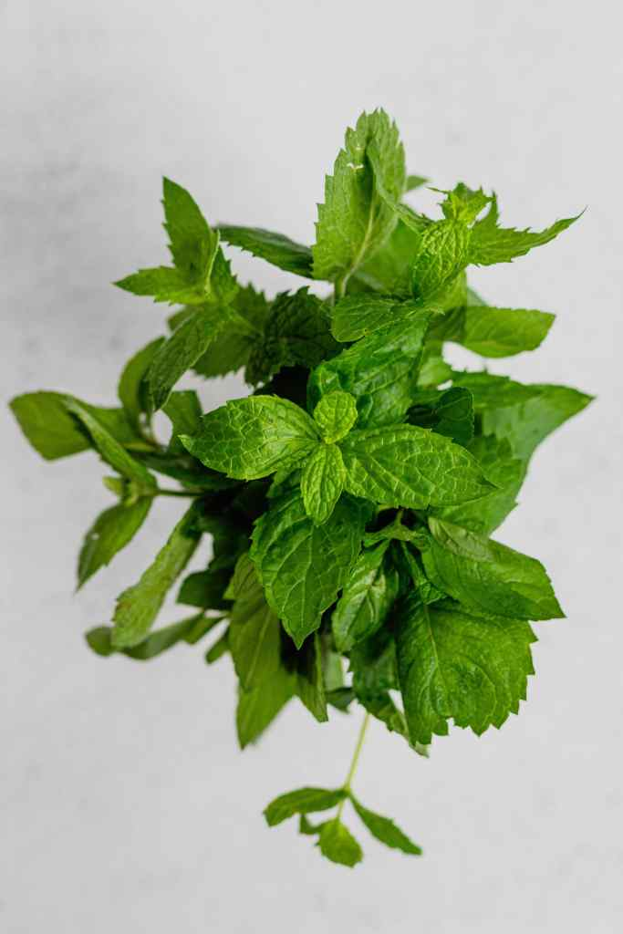 An overhead shot of a bunch of fresh mint leaves on a white backdrop.