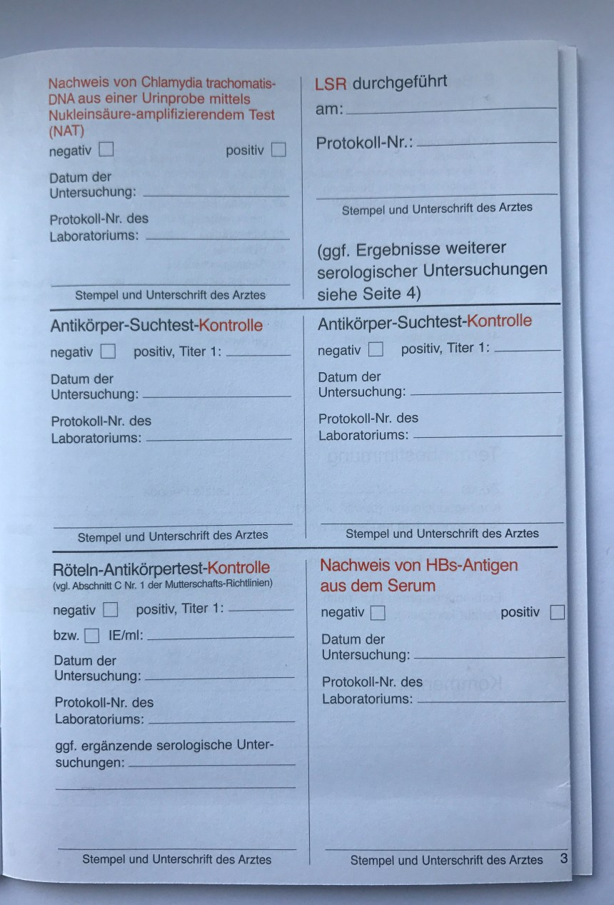 Mutterpass in pregnancy page 3 explained