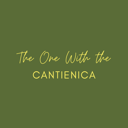 postnatal exercise class with Cantienica