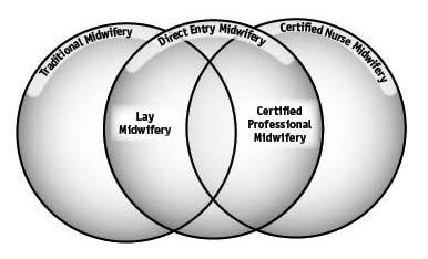 basic midwifery knowledge systems