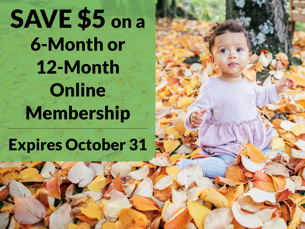 Save $5 on 6 or 12 month membership