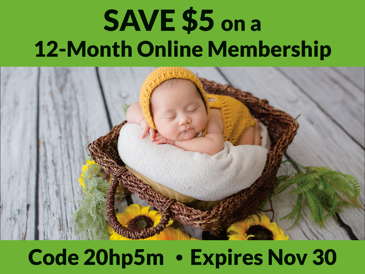 Save $5 on a 12-month online membeship