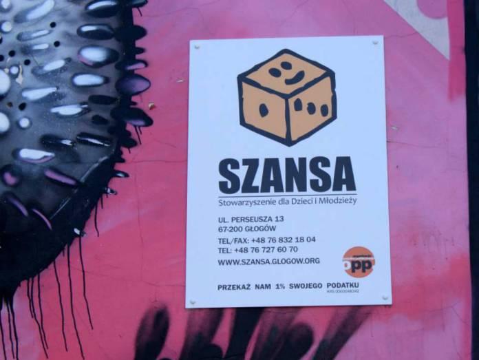 Arch.-2013-09-warsztaty-salsy@stowarzyszenie-Szansa@Glogow-(fot.D.Jeczmionka)-01