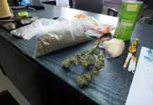 ZDJĘCIE 2014-10-17 policja aresztowała dealera narkotyków@Głogów-num