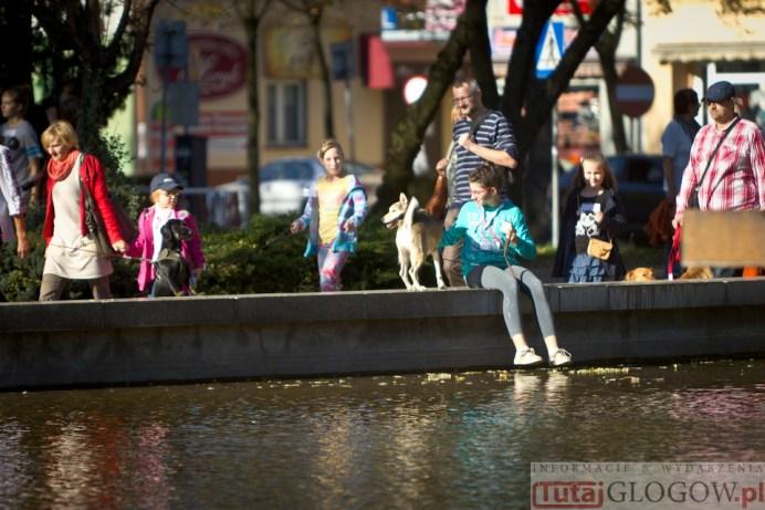 2014-10-19 Parada kundelków @Park Słowiański (fot.P.Dudzicki) 01