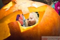 2014-10-29 Dyniówka @MOK (fot.P.Dudzicki)