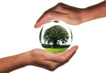 2015-07-11 Polkowice opracują plan gospodarki niskoemisyjnej