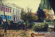 Technikum nr 6 w Głogowie szkoła przyrodnicza ogrodnicza
