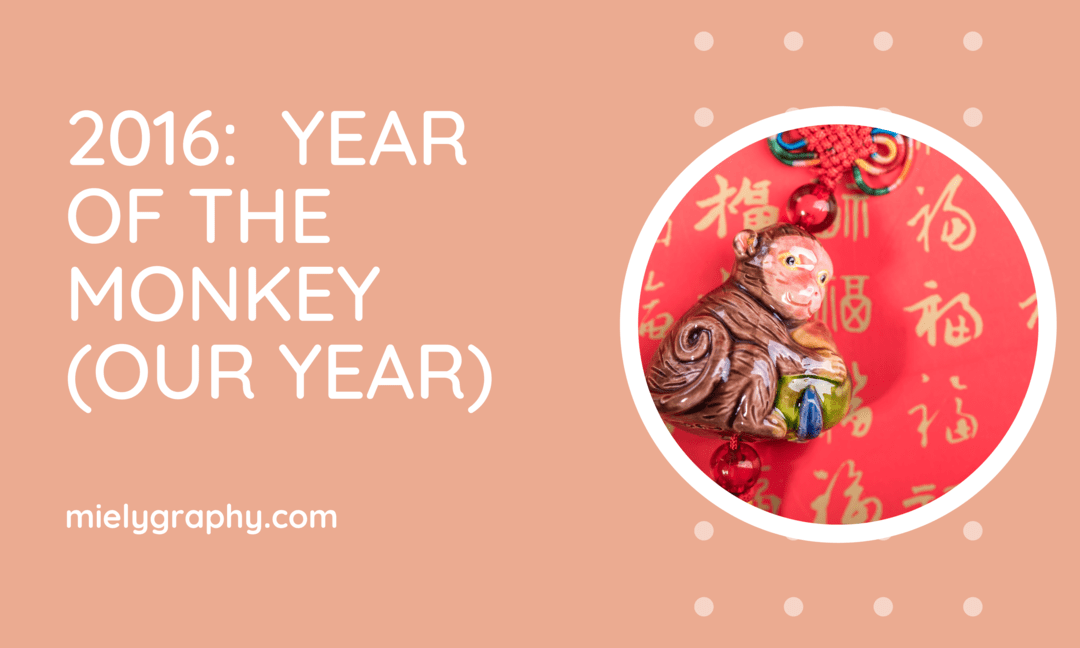 2016 year of the monkey Our Year