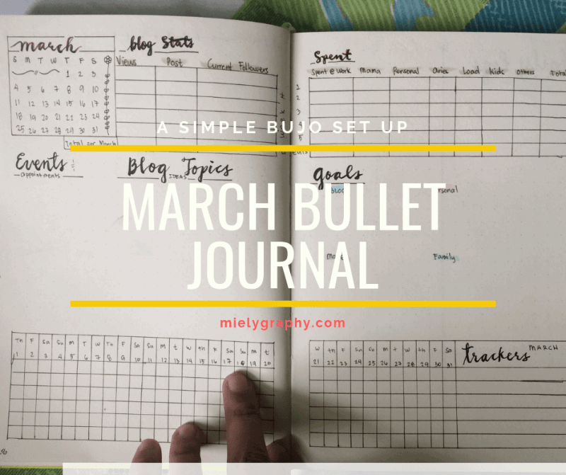 My March Bullet Journal That Will Save My Page Usage