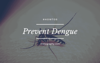 Prevent Dengue Today