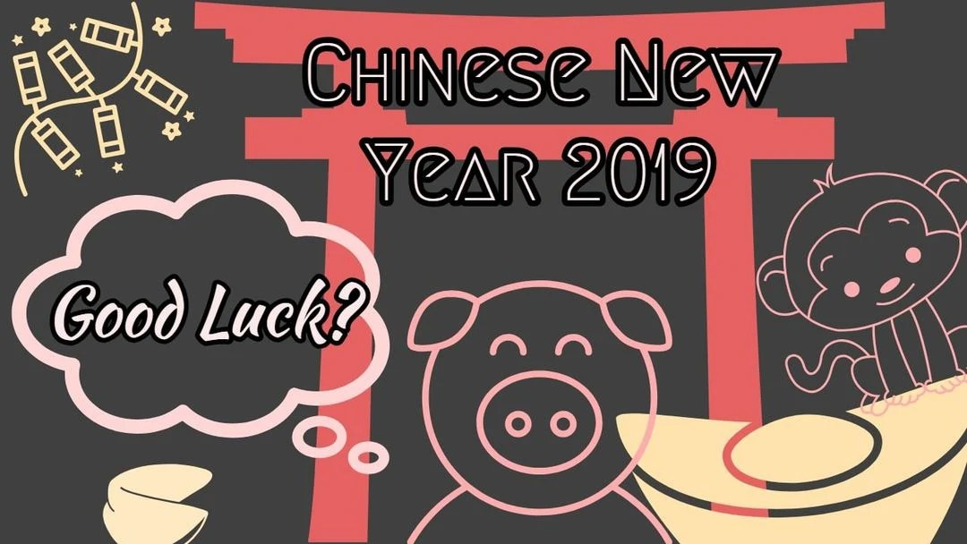 Do you believe in Luck and Horoscopes? Chinese New Year of the Earth Pig 2019!