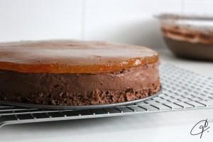 tarta aritz detalle gelatina
