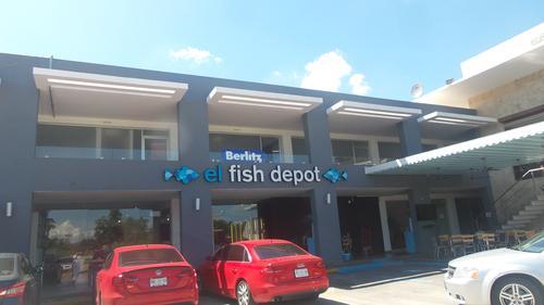 El fish depot vida de lujo culiac n for Restaurante celestino culiacan