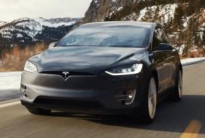 Tesla Model X Wald