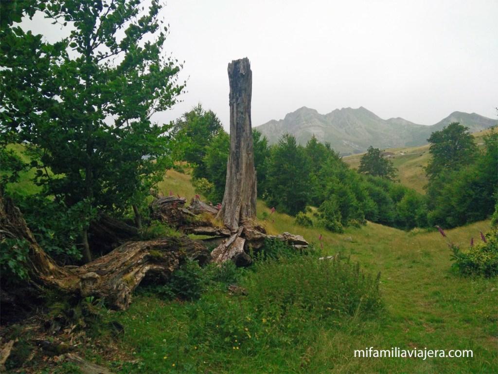 Camino Zemeto, Pirineo Navarro
