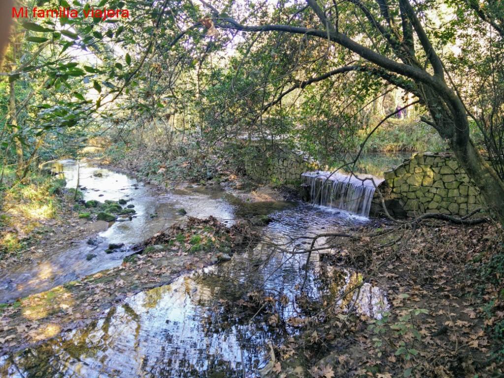 El Jardin Botanico De Gijon Con Ninos Una Visita Obligada En Navidad