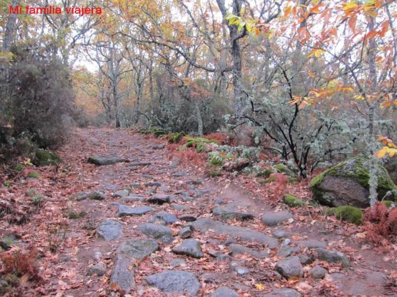 Camino Asentadero-Bosque de los Espejos, Salamanca