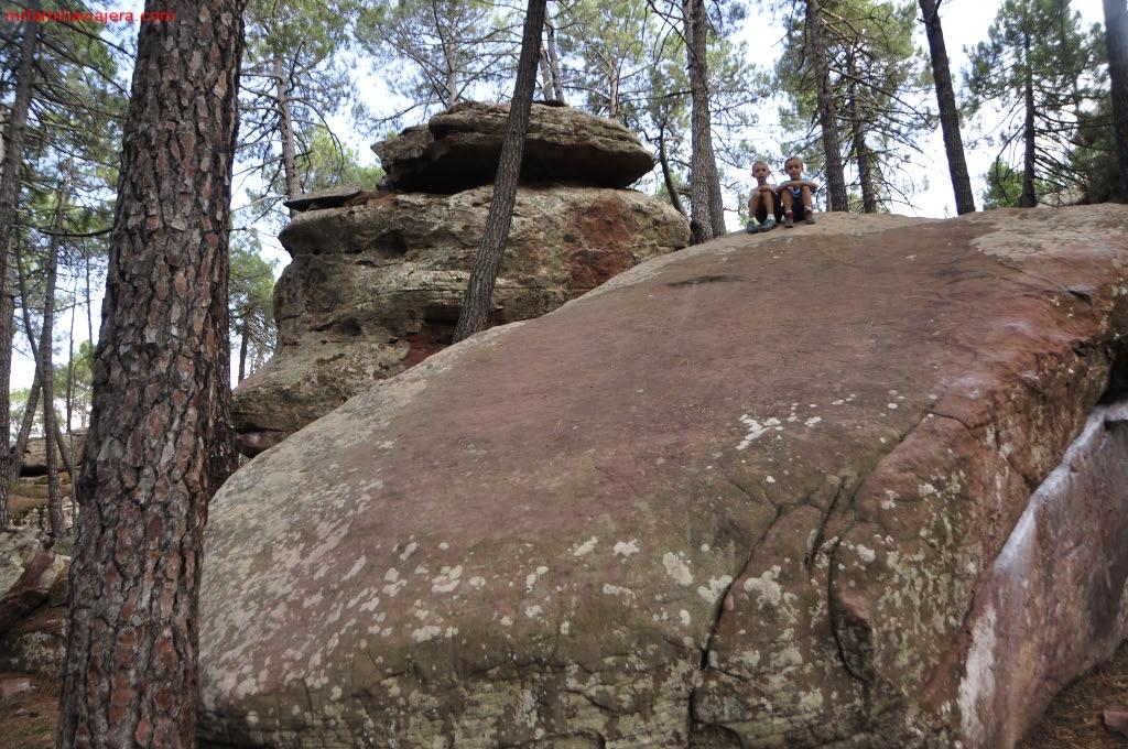 Pinares del Róden, Sierra Albarracin