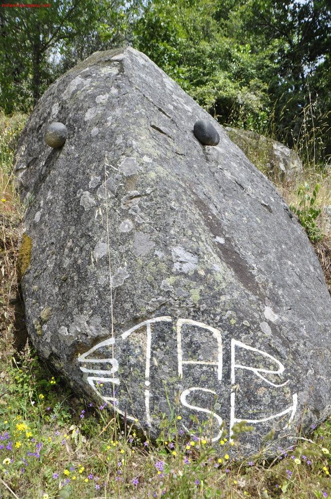 Pez de piedra