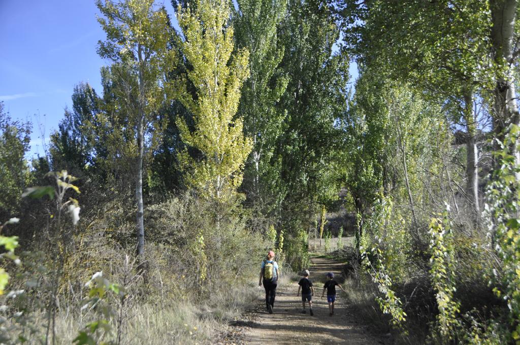 Camino de la Granja