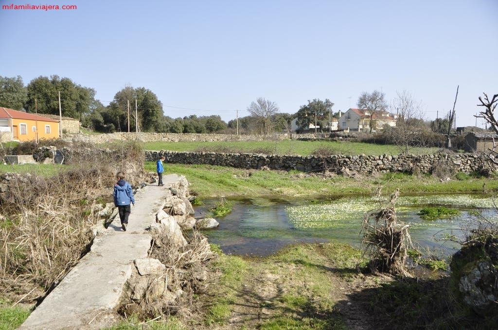 Puente sobre la ribera