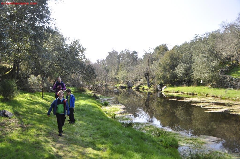 Arroyo del Pisón