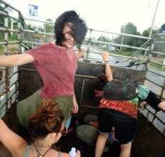 Hitching a ride in the back of a cattle truck during a storm