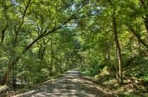 The trail near Portland