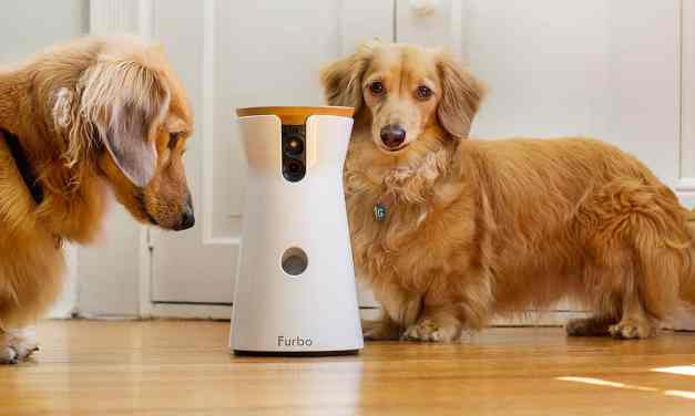 Furbo Dog Camera Review – Treat Tossing, HD Wifi Cam, with 2-Way Audio
