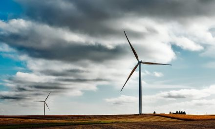 Top 8 of the best renewable energy sources to power your home