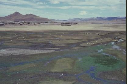 Wetlands as we leave Puno for Cusco