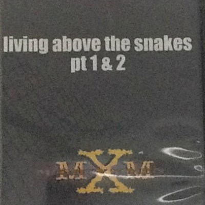 Mighty X Ministry Living Above the Snakes