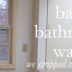 Bare Bathroom Walls