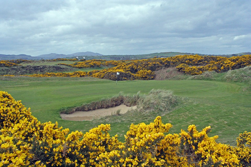 The ever present gorse protects the greens and the fairways, and adds yet another dimension to Royal County Down.