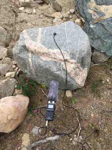 Rona recording rock
