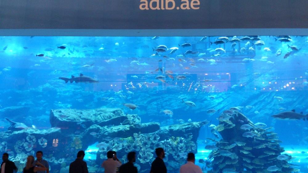 Gallery Dubai (3/6)