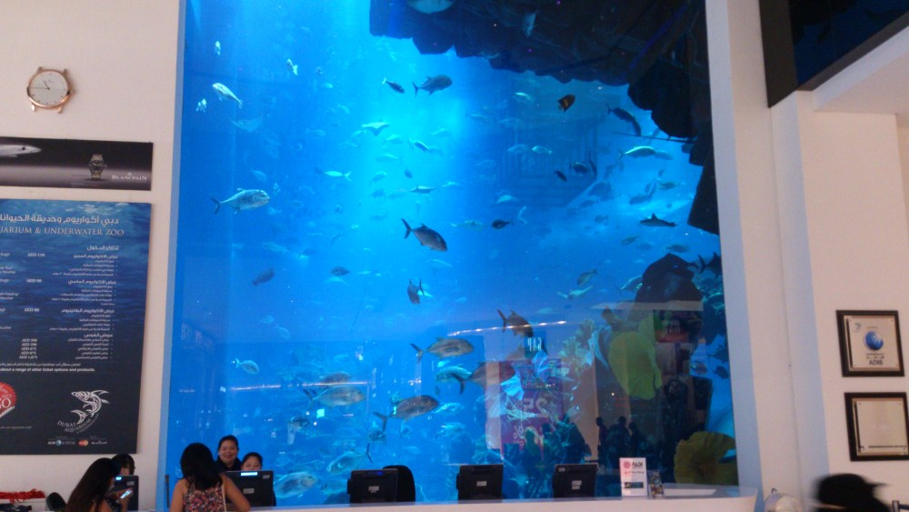 Gallery Dubai (4/6)