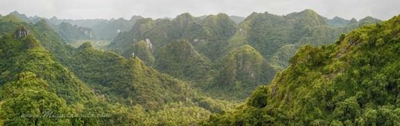Parc National de l'Ile de Cat Ba, dans la Baie d'Halong