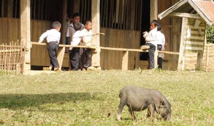 L'école de Ban Hoy Seen (Muang Ngoi, Laos)
