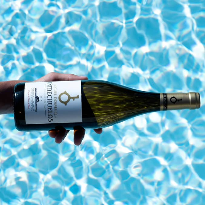 Bodega Miguel Domecq Entrechuelos Chardonnay