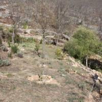 20060514 Vistas de La Calera en Tierras de Alía. Villuercas Ibores Jara. Extremadura