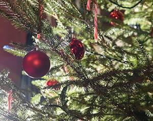 Weihnachtsfeier Lila Nashorn