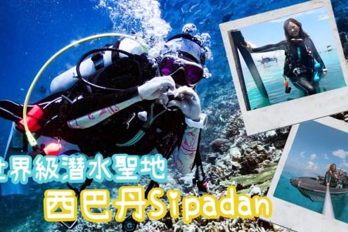 海龜鯊魚捷克魚風暴看到爽! 一天只開放120人世界級潛水聖地馬來西亞西巴丹|Diving in Sipadan Island